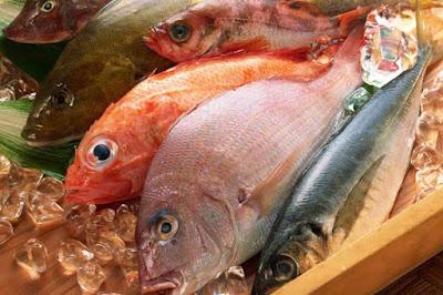 الاسماك غنية بالأرچنين