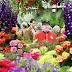 Британия, 24-28 мая: Выставка цветов