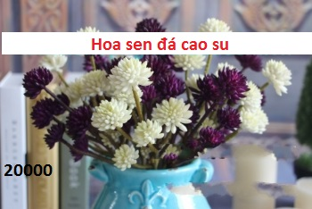 Phu kien hoa pha le tai Cau Dien