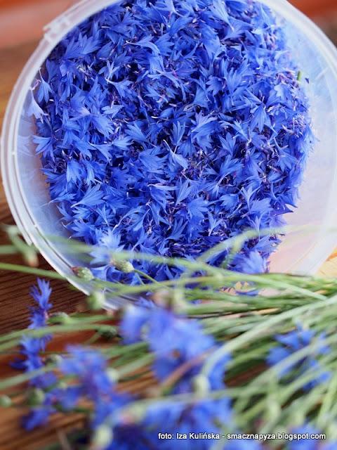 chaber blawatek, napoj blawatkowy, lemoniada chabrowa, wino chabrowe, winko modrakowe, modraki, platki kwiatow, kwiaty jadalne