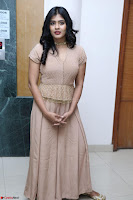 Hebah Patel in Brown Kurti and Plazzo Stuunning Pics at Santosham awards 2017 curtain raiser press meet 02.08.2017 016.JPG