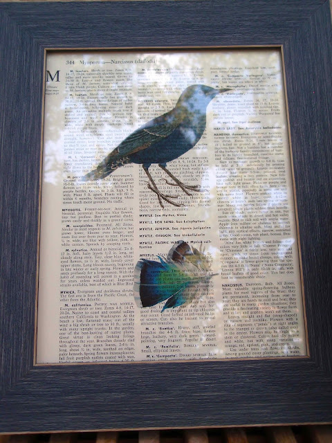 framed-bird-and-feather-print-on-dictionary-page