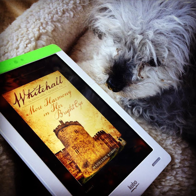 Murchie lies in a fuzzy white dog bed, slightly to one side of a Kobo with Whitehall Episode 12's cover on its screen. The cover features a stone castle tower against a sepia-toned sky.