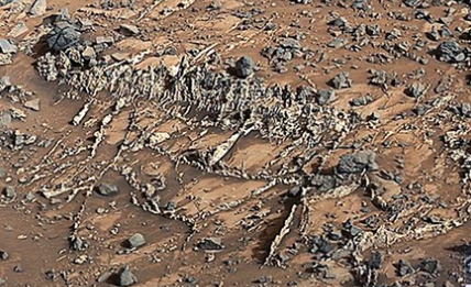 Skeletons and bones found on Mars by the Mars Rover Nasa is keeping quiet.