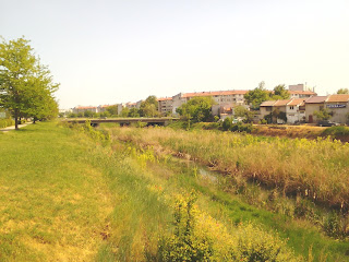 Greenery, Yambol, River Tundzha,