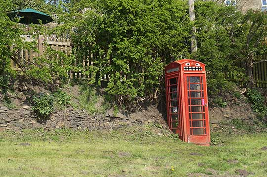 The Drunk Telephone Box - Nature Comes Alive