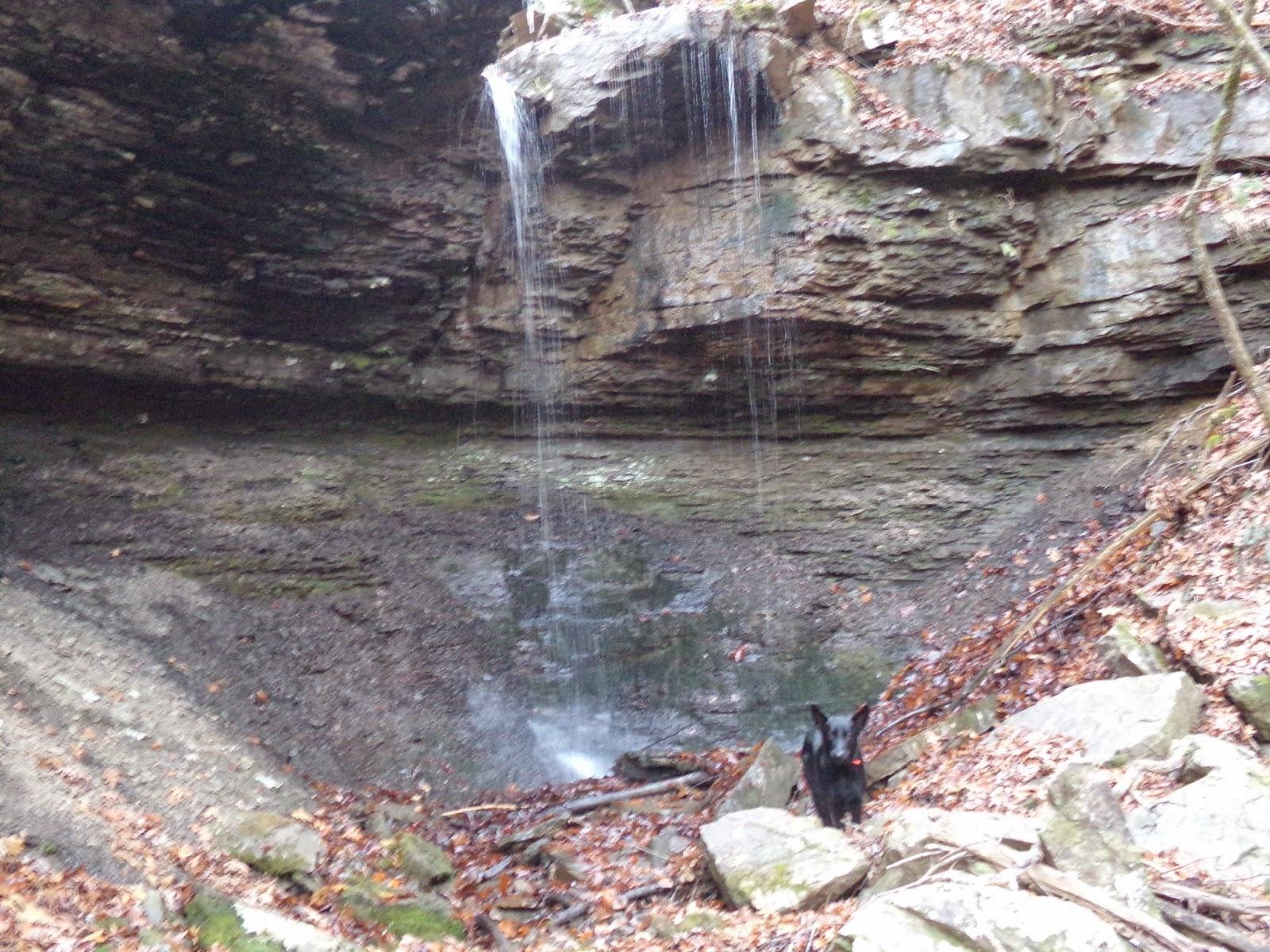 Singles in mineral springs ar Mineral Springs, Arkansas - Wikipedia