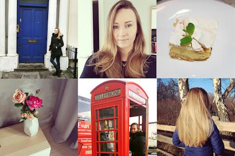 Styczeń i luty 2017 na zdjęciach | Londyn, kocia historia, zakupy i bitch face - czytaj dalej »