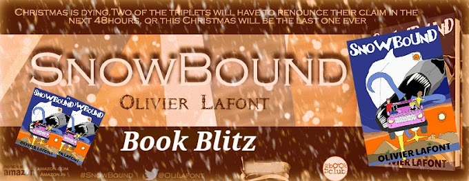 Book Blitz: Snowbound by Olivier Lafont