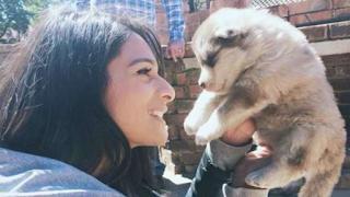 Καλιφόρνια: Μόνο ζώα από καταφύγια θα πωλούνται στα pet shops
