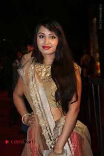Actress Vennela Stills in Lehenga Choli at Gemini TV Puraskaralu 2016 Event  0017.JPG