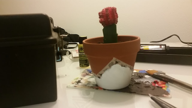 DIY, design, pot, acrylic, planter, terra cotta, cactus