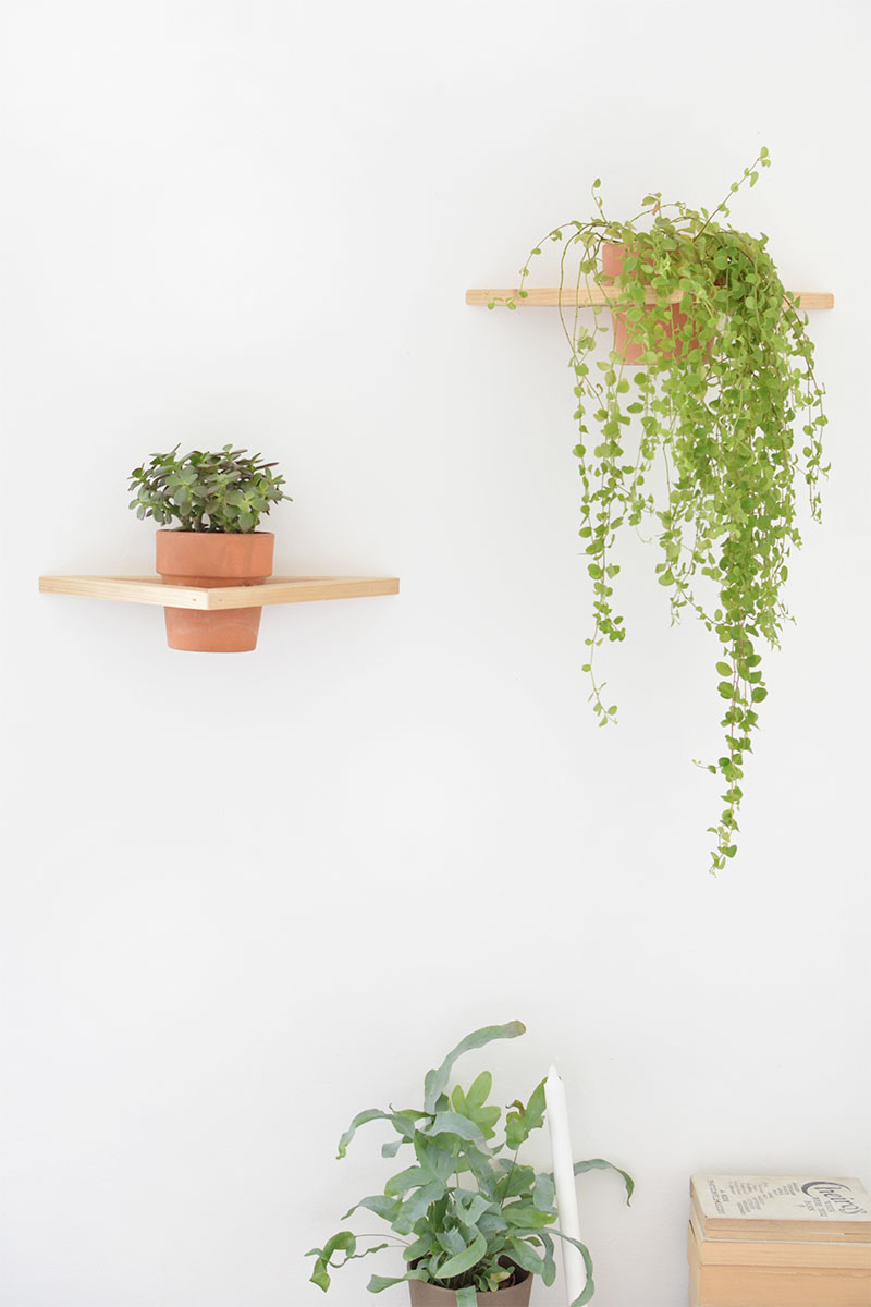 how to geo wall planter