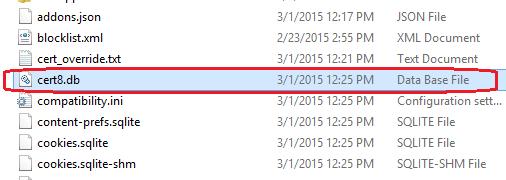 Menghapus file cert8.db pada system 32