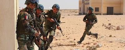 القوات المسلحة المصرية تثأر وتقتل 40 ارهابيا