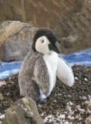 Baby Penguin Puppet