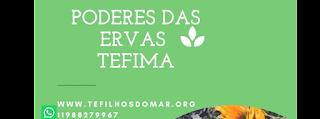 https://www.facebook.com/poderesdaservastefima/