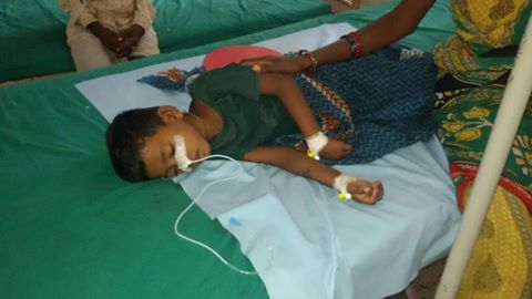 15027845 689226871256538 9105082986329540910 n Today another 2 Child died in Japanese Fever in Malkangiri, Odisha (Source: Media)