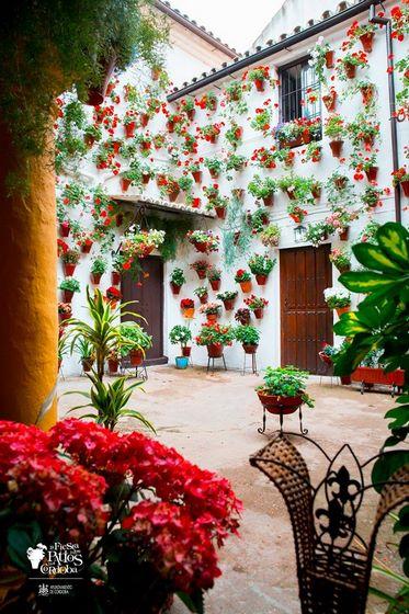 Fiesta Patios Córdoba. San Basilio, 14 - Ruta Alcazar Viejo Modalidad: Arquitectura antigua