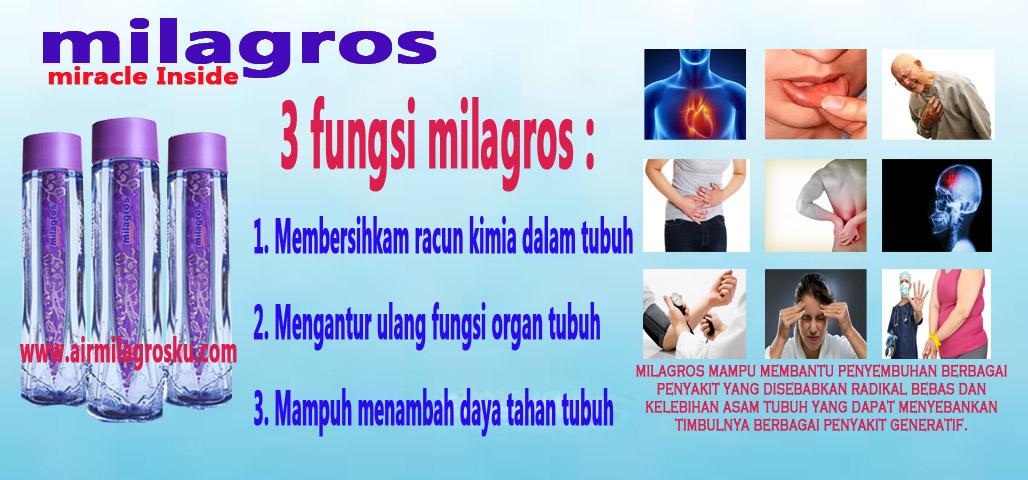 Image Result For Agen Milagros Bekasi