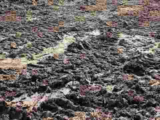تفسير حلم الطين (الوقوع في الوحل والخروج منه) فى المنام بالتفصيل