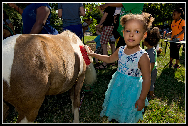 Northside Farmers Market; Petting Zoo; Children