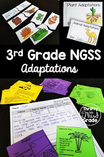Interdependent Relationships {aligns to NGSS 3-LS2-1, 3-LS4-1, 3-LS4-3, 3-LS4-4} This science unit covers fossils, animal groups, plant and animal adaptations, and environmental changes. It includes plenty of hands on activities, reading passages, vocabulary, interactive notebook pages, posters, and more! Download the huge preview to learn more.