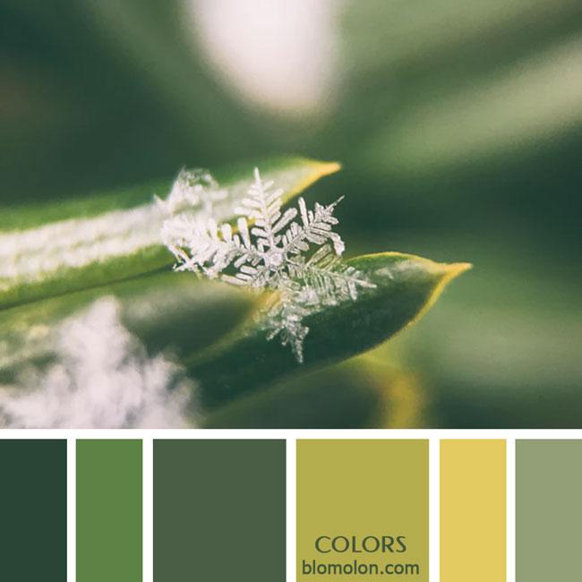 variedad_en_color_paletas_de_colores_52