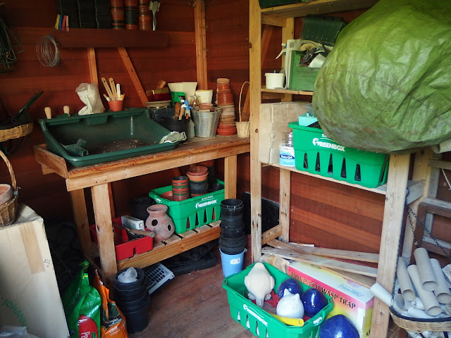 The shed after its tidy up - part one