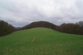 Eine hügelig Landschaft vor grauem Himmel