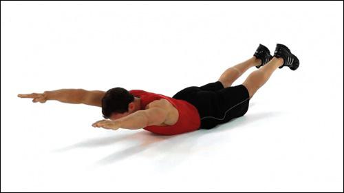 Muscler le bas du dos