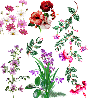 Textile digital design flowers motifs