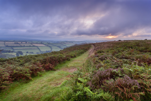 Dawn clouds over a pathway at The Punchbowl in Exmoor by Martyn Ferry Photography