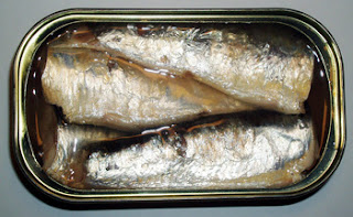 mackerel vs sardines taste<br><br>The consumer needs mackerel and sardines to filling out their nutrition daily, so they will go to confused to select where's the best manufacturer which processed mackerel and sardines. Find the best service and quality product from us. We provide a lot of Varian of canned mackerel and sardines. These fish are usually considered as the same, while actually, they are different species. We also consider the best taste of the sauce. Besides of easy to serve, fishes are also rich in proteins and omega-3 that will be useful for your health. Our product is easy to serve, as you'll just need to warm them and serve them on the plate. We selectively choose the foods that will be available for your need, providing not only delicious food but also nutritious, healthy food for the whole family.<br><br><h4>Info Pemesanan? Hubungi www.tunacannedindonesia.com!</h4><br>Email : <a href=