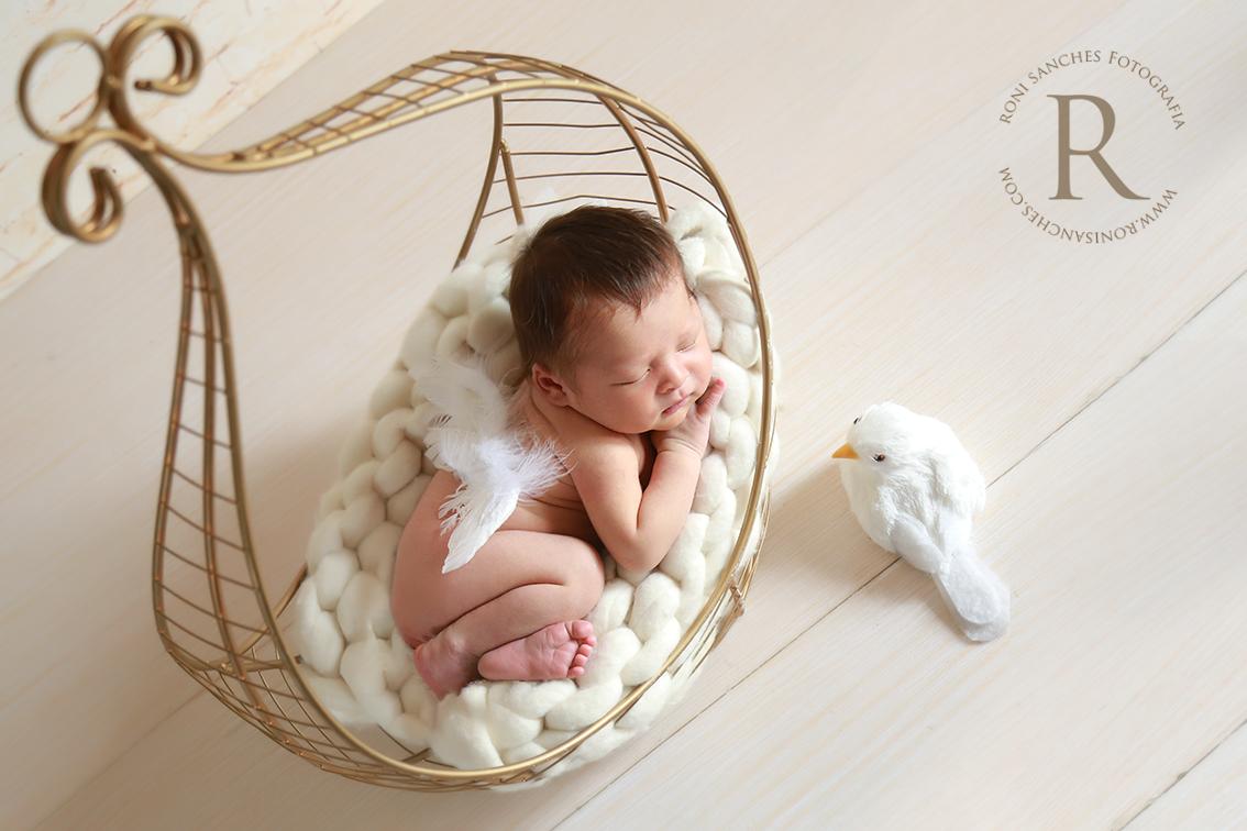 sessão de fotos newborn