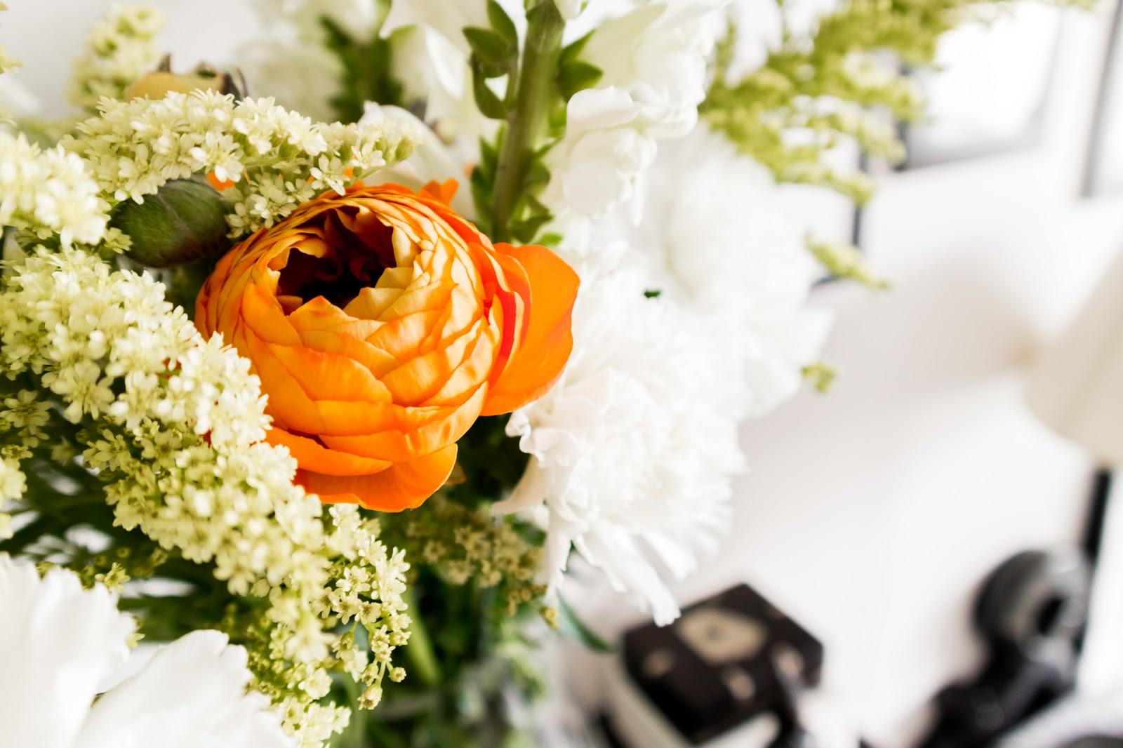 the Floral Society, viikkokukat, kukat, koti