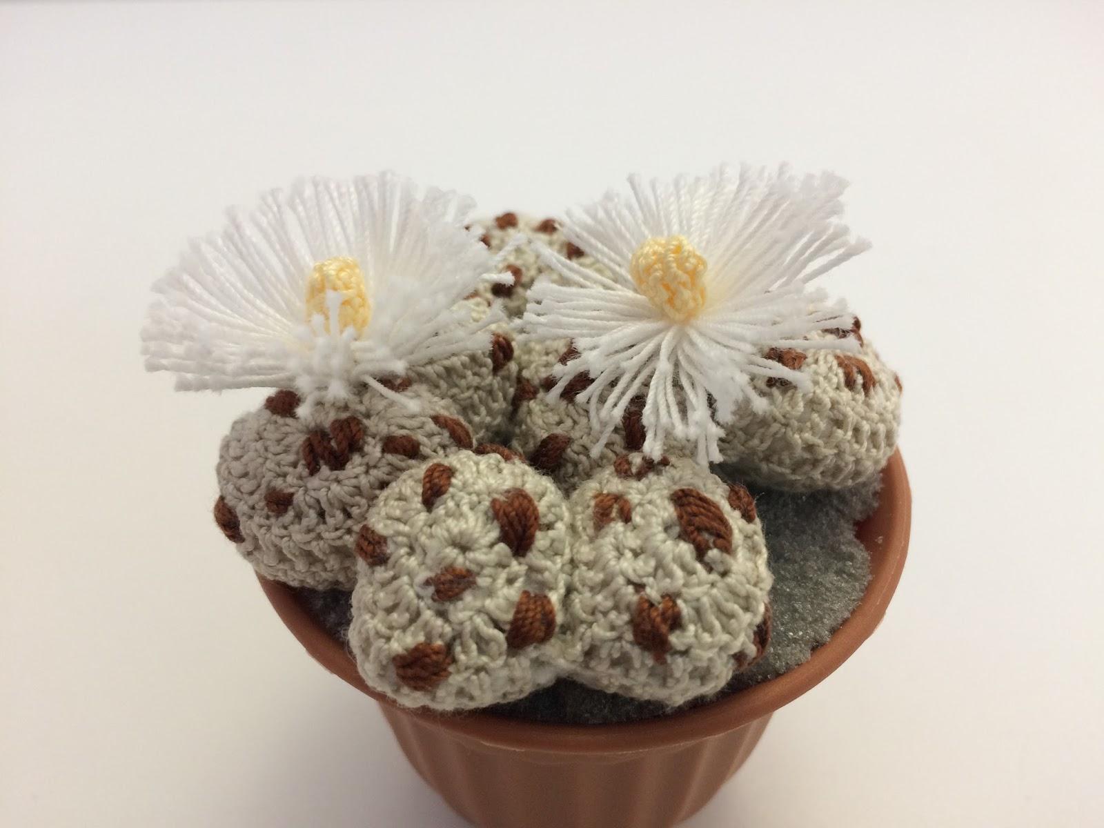 Il blog di sam how to crochet a lithops for Il blog di sam piante grasse