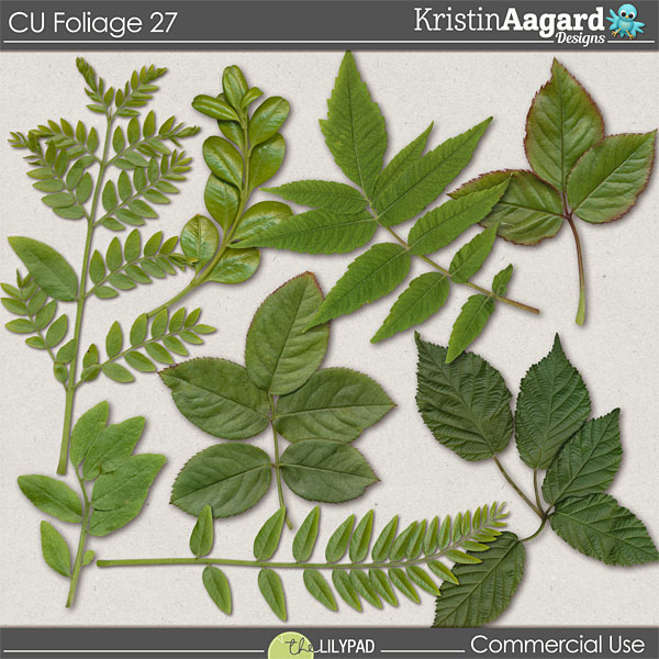 http://the-lilypad.com/store/digital-scrapbooking-cu-foliage-27.html