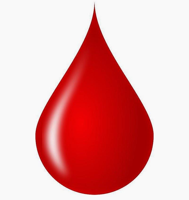 4 Macam Golongan Darah Manusia