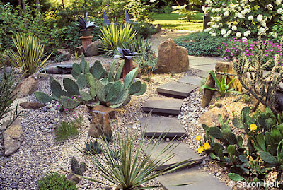Succulent Garden Design and the Important Factor