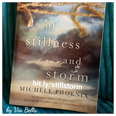 Of Stillness and Storm, Book Review, Book Look Bloggers, Michele Phoenix, missionaries