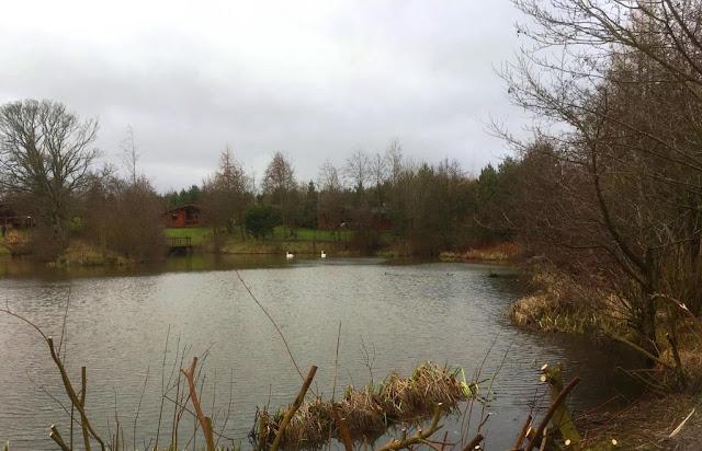 felmoor park northumberland acorn leisure holidays