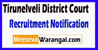 Tirunelveli District Court Recruitment Notification 2017  Last Date 30-06-2017