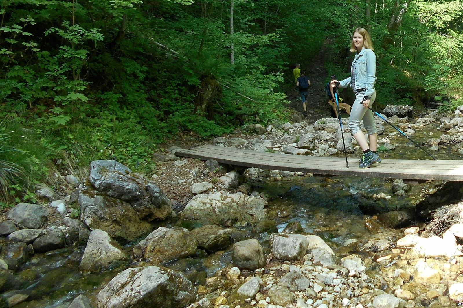 Brücke in der Vogelgesangklamm