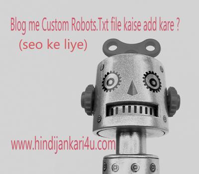 Custom Robots.Txt file