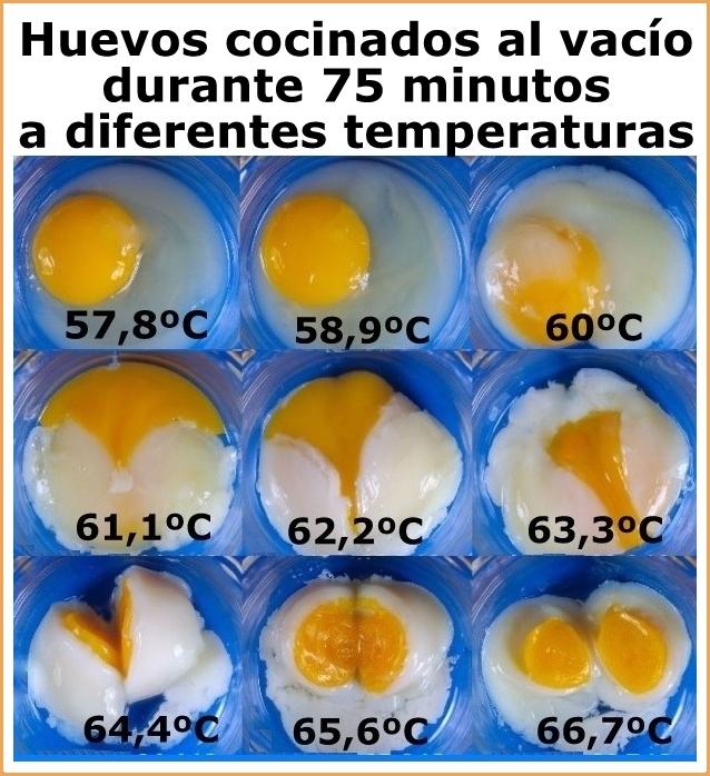 Gastroasuntos glosario gastron mico nuevas formas de for Cocina baja temperatura