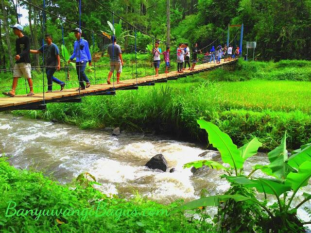 Jembatan diatas Sungai Badeng Songgon.