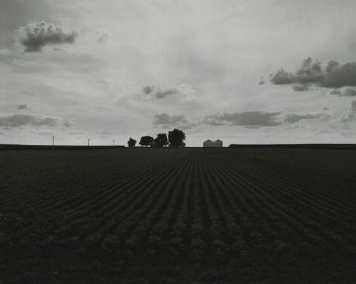 """""""Farm Landscapes"""" - 2009 - photo by Rhondal Mckinney   sad black and white photos   imagenes bellas de soledad y tristeza, fotos en blanco y negro bonitas"""