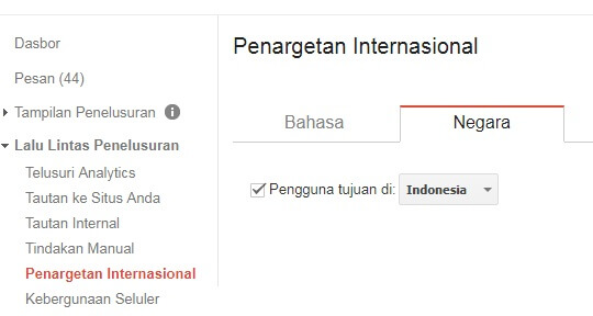 Gambar Penargetan Internasional Google Webmaster