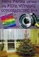 http://misiowyzakatek.blogspot.com/2013/12/wolny-wybor-wyzwanie-foto.html